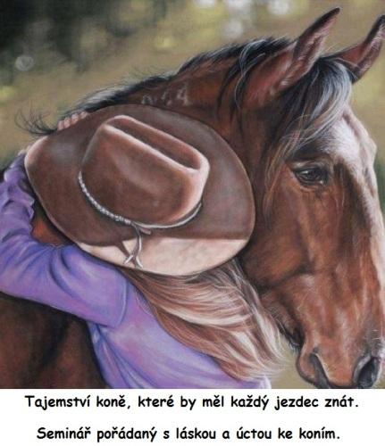 tajemství koně